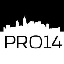 Logo pro14 med
