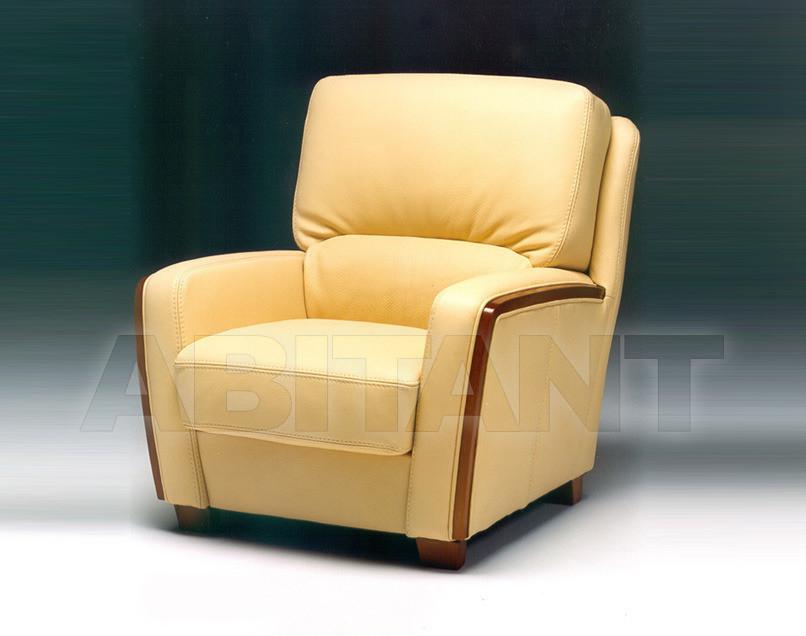 Купить Кресло ITACA Satis S.p.A Collezione 2011 ITACA Armchair