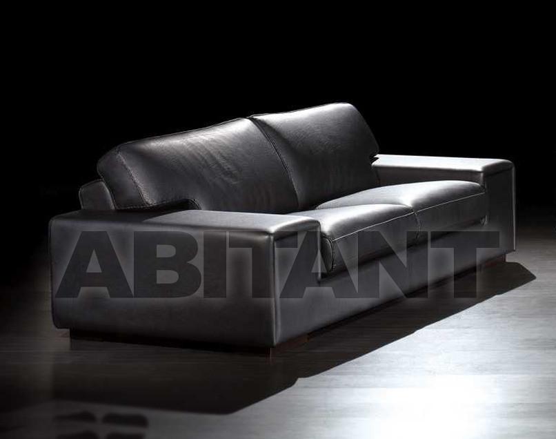 Купить Диван Cattaneo F.Lli Cattaneo Ratell new age 2p