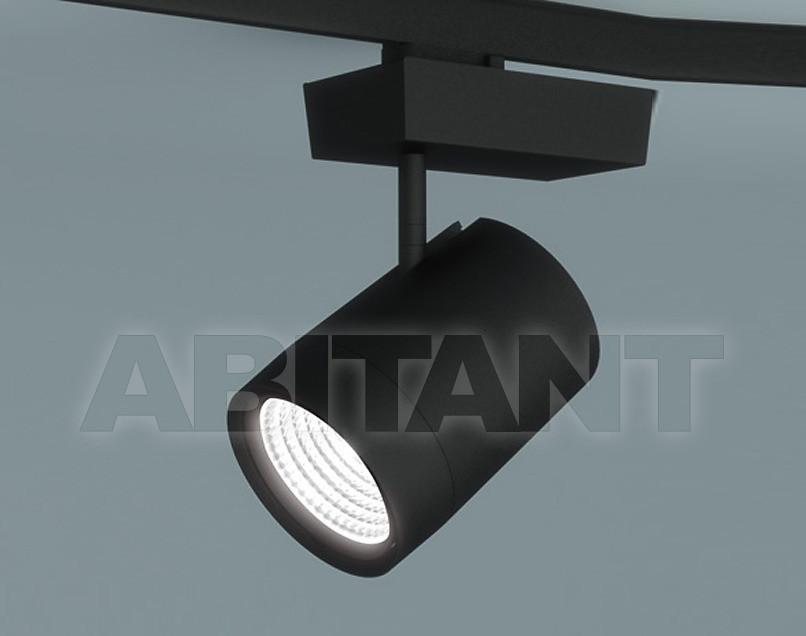Купить Светильник-спот Molto Luce G.m.b.H. Illuminazione 567-011535