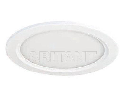 Купить Светильник точечный Brumberg Light 20xiii 12017073