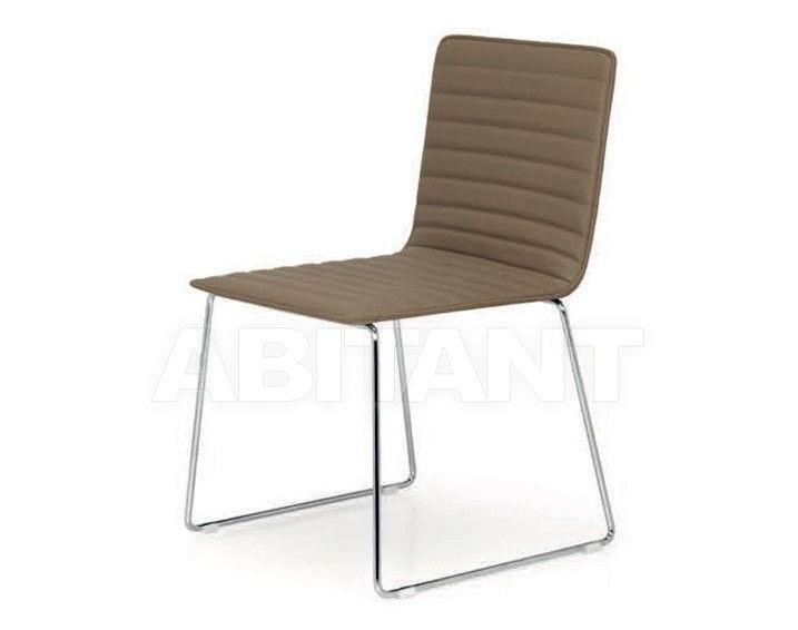Купить Стул Quinti Chairs 342S