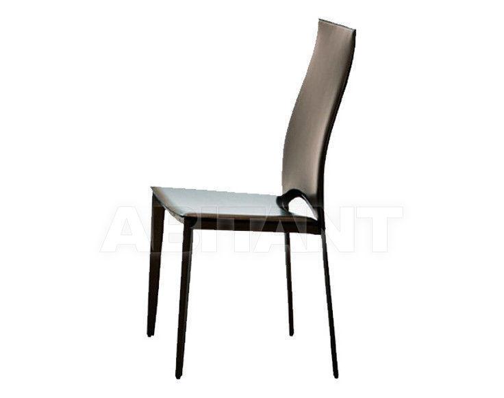 Купить Стул Ozzio Design/Pozzoli Group srl 2011 S340 VIVALTA