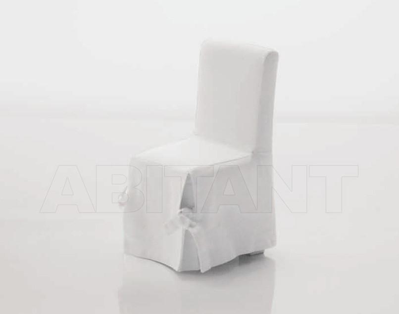 Купить Стул Cyrus Company Anteprima B202MS