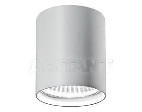 Купить Светильник точечный Vertigo Bird 2011/2012 V01017 5212