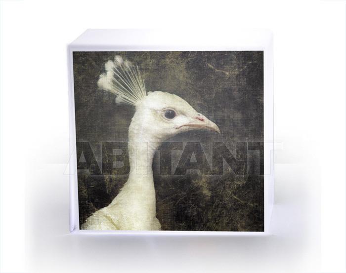 Купить Лампа настольная Acrila Luminaries Cube Lamp Peacock