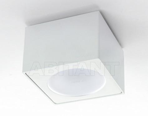 Купить Светильник Egoluce Ceiling Lamps 5513.01