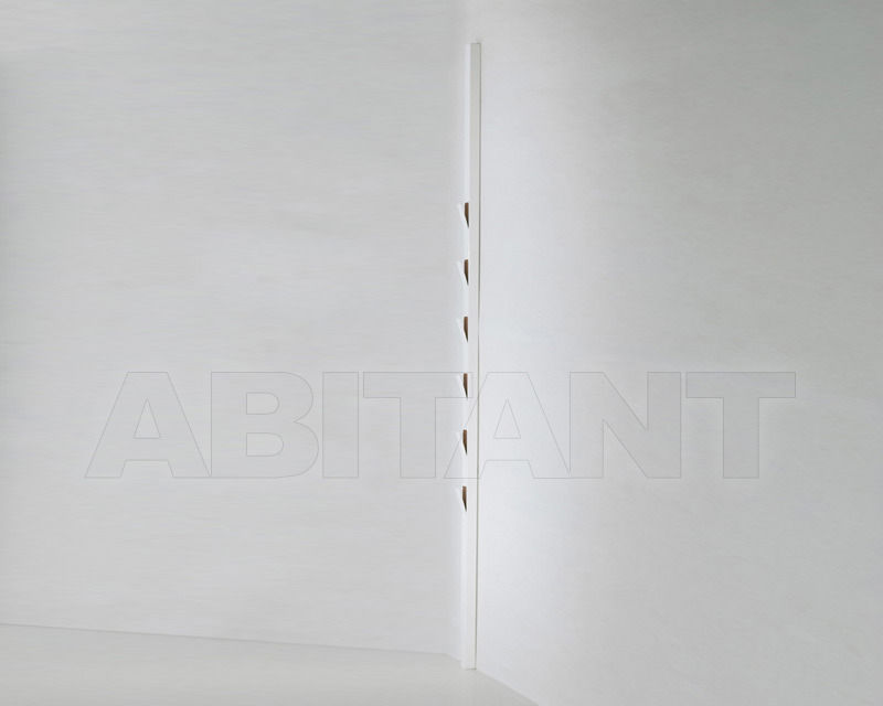 Купить Вешалка настенная WINDOW Viccarbe Accesories WIPAB white