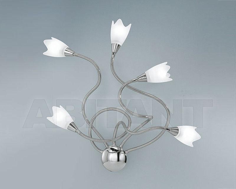 Купить Светильник настенный FLEX TULIP Antea Luce Generale Collection 4924.5