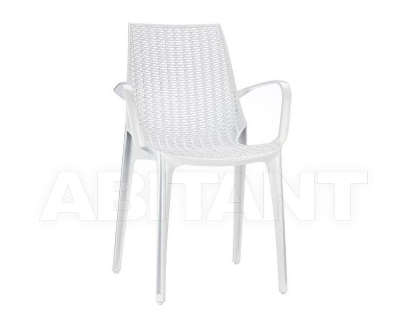 Купить Стул с подлокотниками Scab Design / Scab Giardino S.p.a. Sedute Design 2653 310