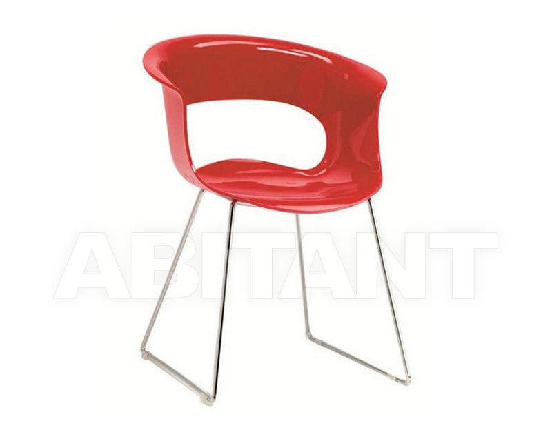 Купить Стул с подлокотниками Scab Design / Scab Giardino S.p.a. Marzo 2691 340