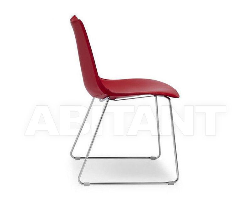 Купить Стул Scab Design / Scab Giardino S.p.a. Novita Comfort 2641 CN 81