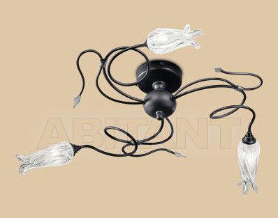 Купить Светильник BBB Illuminazione Giglio 1124/PL3