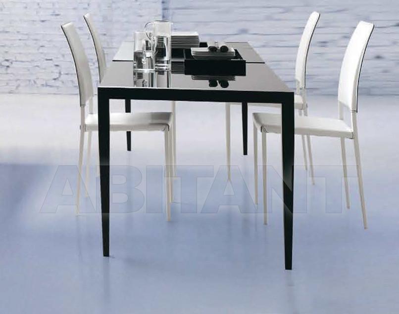 Купить Стол обеденный Tonin Casa All Around The World 8049R