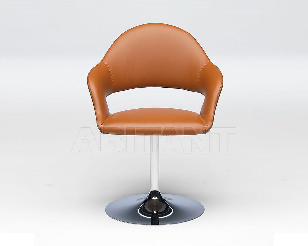 Купить Стул с подлокотниками Paolo Castelli  Inspiration GINEVRA Chair