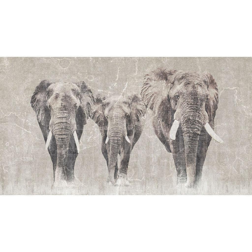 Купить Фотообои Africa LondonArt - Grafika S.r.l.  ICON 13 AF 01