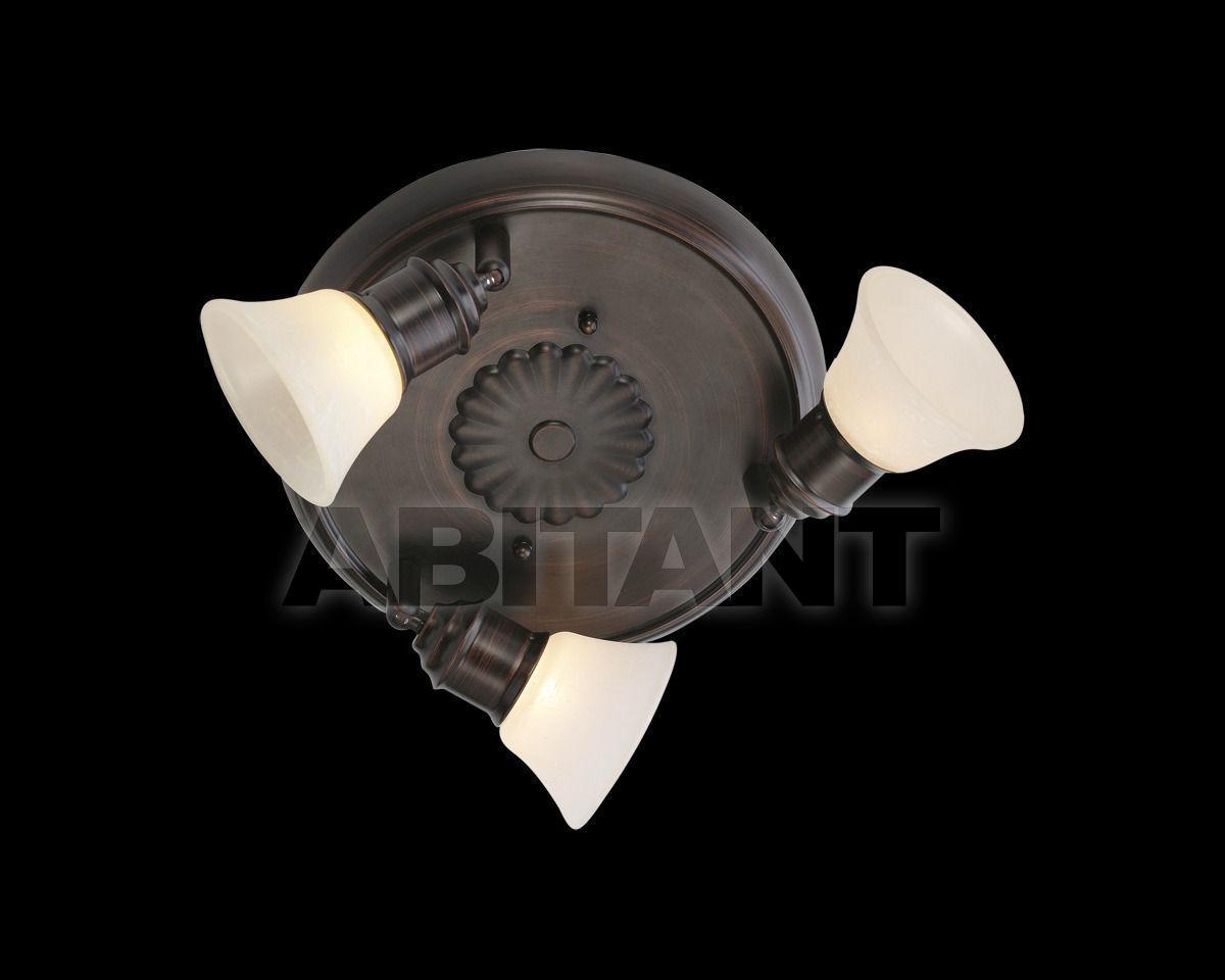 Купить Светильник-спот ALAMO Eglo Leuchten GmbH Traditional 89061