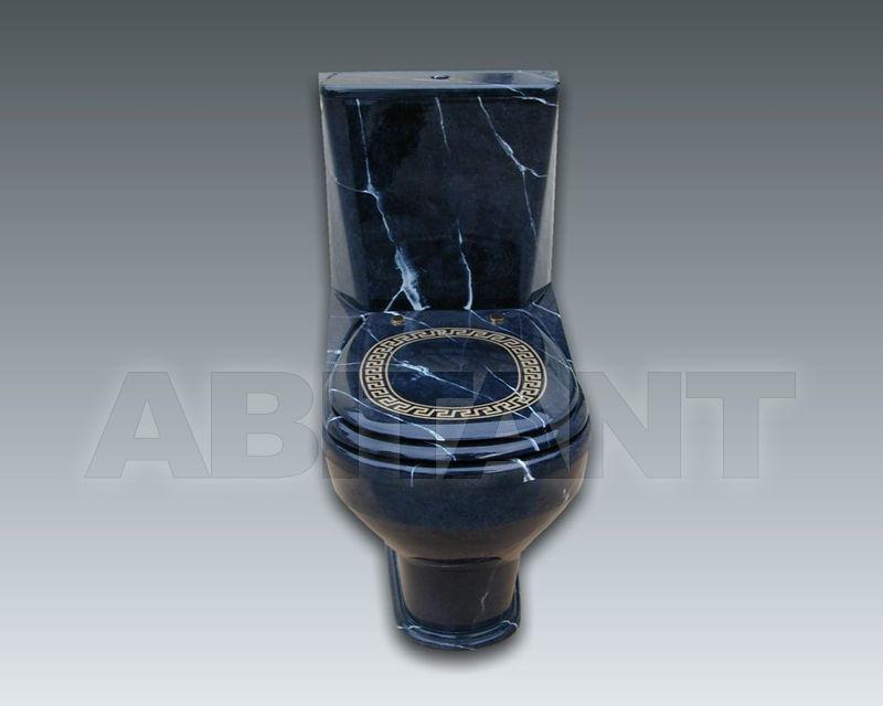 Купить Унитаз напольный NEW SEAT MONOBLOC Watergame Company 2015 WC903F3 WC999F3+WCD004F2