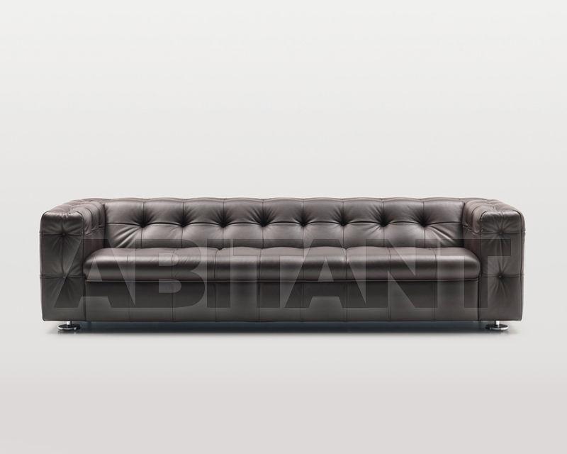 Купить Диван De Sede 2017 RH-0306/103